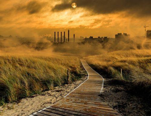 Anna Kaca – Smog