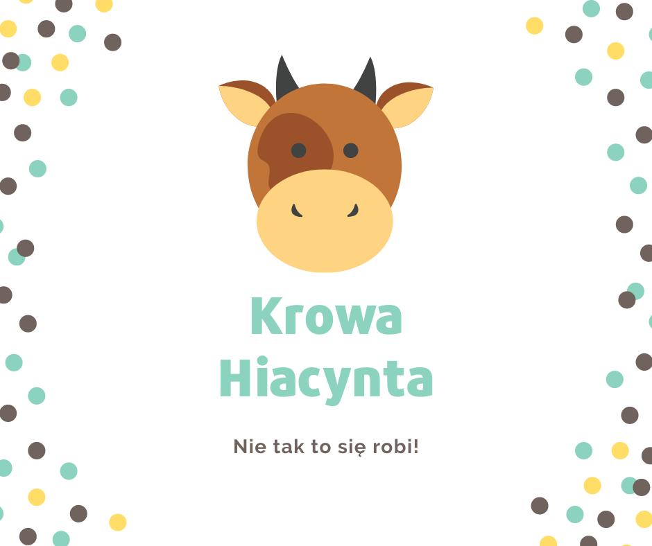 Anna Śliwińska - Krowa Hiacynta. Nie tak to się robi; #TataMariusz