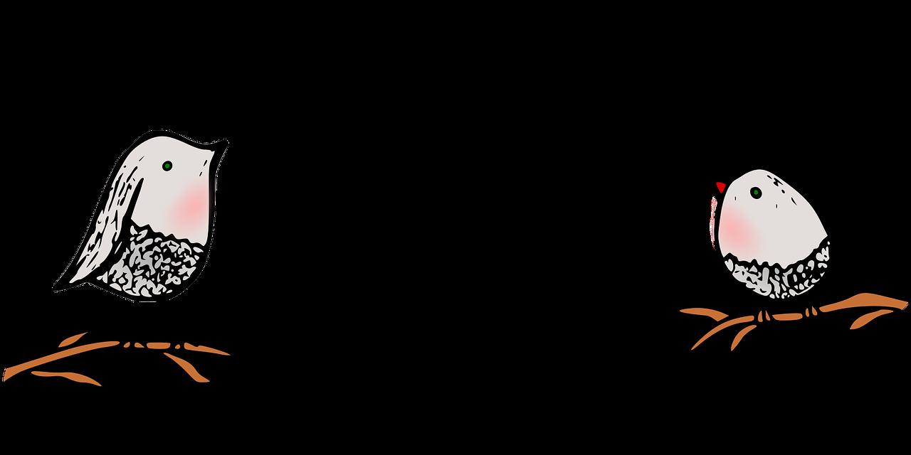 Bożena Czarnota - Łąkowy koncert; Ilu. Pixabay