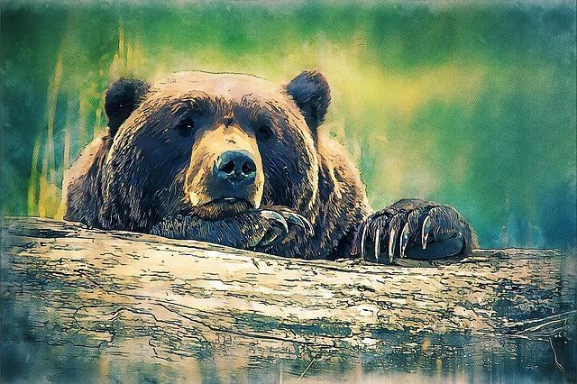 Joanna Papuzińska - O niedźwiedziu królewiczu; Czyta #TataMariusz